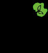 Noyes Logo